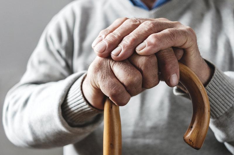 Могут ли цитотоксические Т-клетки быть ключом к долголетию?