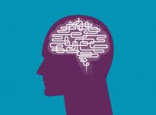Исследования выявляют изменения в нервных цепях, лежащие в основе самоконтроля в подростковом возрасте