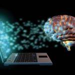 Модель мозга предлагает новое понимание повреждений, вызванных инсультом и другими травмами