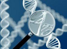 Активация определенного генетического пути может замедлить прогрессирование метастатического рака молочной железы
