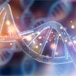 Репродуктивный геном из лаборатории