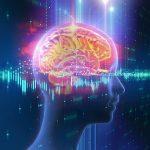 Ученые следят за воспроизведением воспоминаний в реальном времени