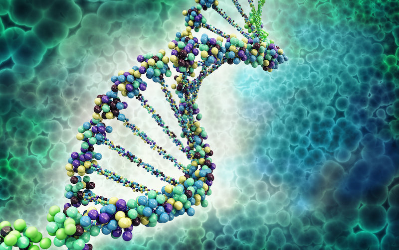 Самое древнее генетическое доказательство человека проясняет спор о наших предках