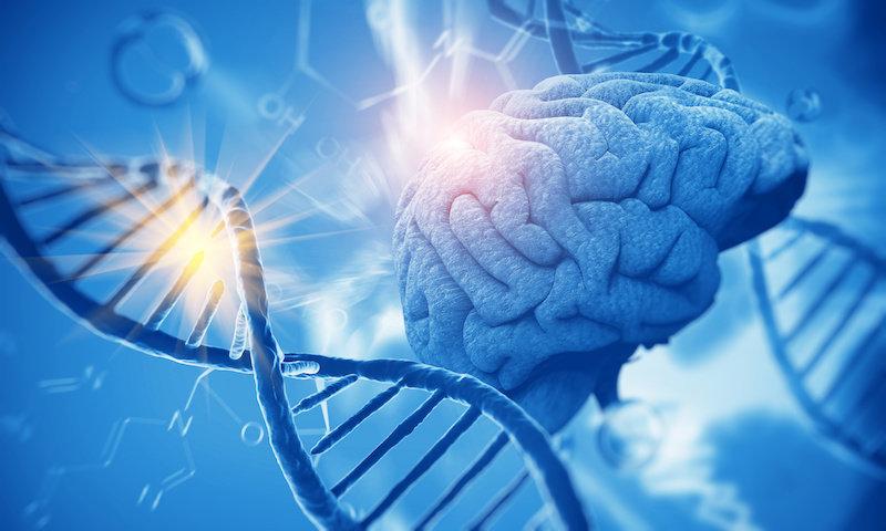 Генный вариант предотвращает болезнь Альцгеймера у некоторых людей
