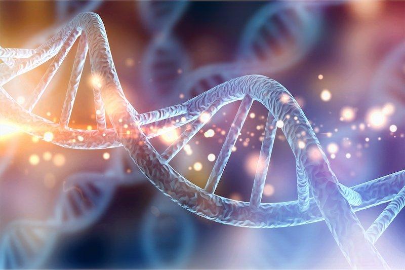Исследование близнецов обнаруживает, что наша чувствительность отчасти связана с нашими генами