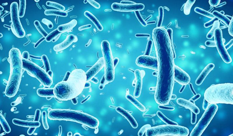 Вождение бактерий для производства потенциальных антибиотиков, противопаразитарных соединений