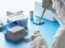 Лабораторный вирус имитирует вирус COVID-19