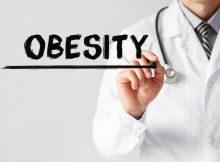 Пересаженные клетки, похожие на бурый жир, обещают лечить ожирение и диабет
