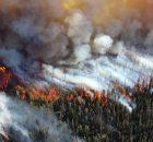 Неожиданные выбросы лесных пожаров влияют на качество воздуха во всем мире