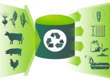 Введение плазмы в биомассу может облегчить производство биогаза