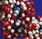 Методика позволяет удобно и точно получать оптические изображения отдельных белков