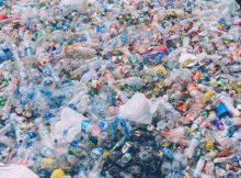 Коктейль из энзимов, поедающих пластик, открывает новую надежду на пластиковые отходы