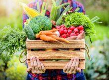 Употребление большего количества растительной пищи может снизить риск сердечных заболеваний у молодых людей и пожилых женщин